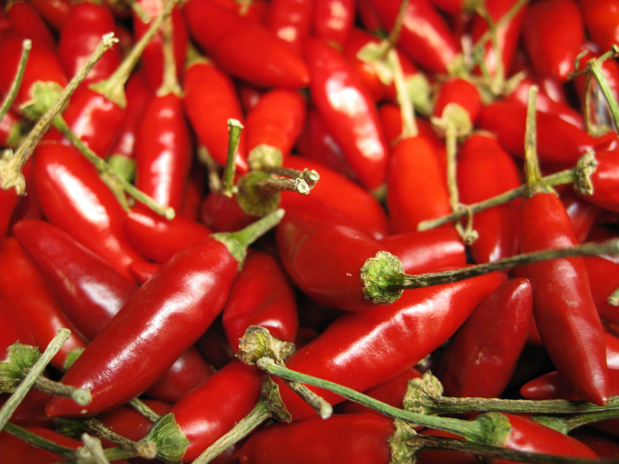 People in Mexico Were Using Chili Peppers to Make Spicy Drinks 2400 Years Ago