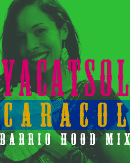Caracol (Barrio Hood Mix)